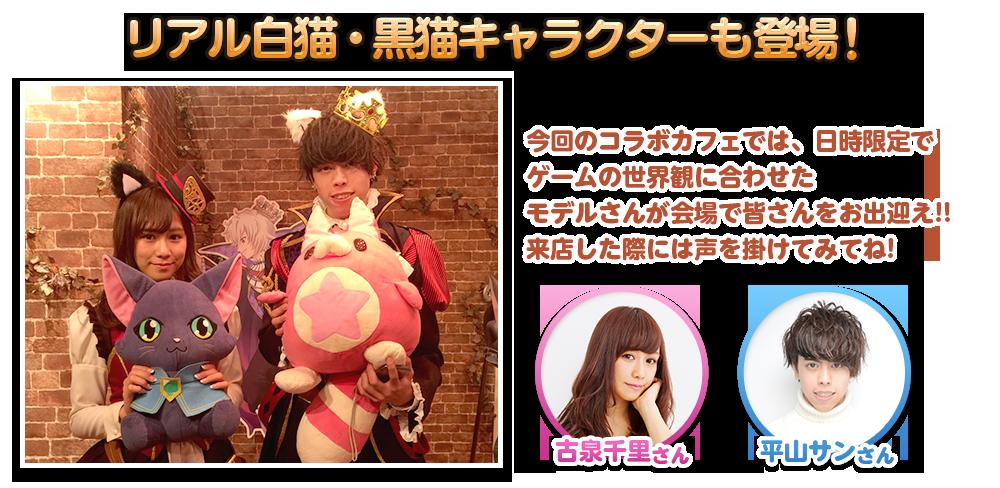 リアル白猫・黒猫キャラクターも登場!